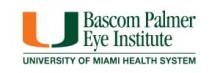 Bascom Palmer InterAmerican Course 2014